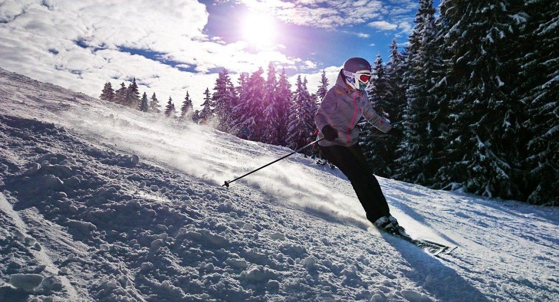 Navi-ski, le pro des sports d'hiver